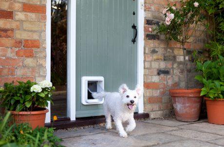 SureFlap Microchip Pet Door Dog