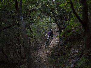 Brevard-NC-Mountain-Biking